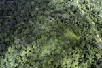 Borneo rainforest -- sabah_aerial_1026