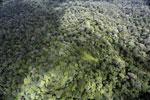 Borneo rainforest -- sabah_aerial_1027