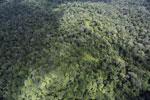 Borneo rainforest -- sabah_aerial_1028