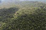 Borneo rainforest -- sabah_aerial_1045