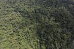 Borneo rainforest -- sabah_aerial_1048