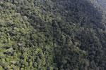 Borneo rainforest -- sabah_aerial_1049