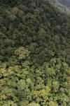 Borneo rainforest -- sabah_aerial_1055