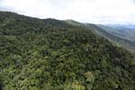 Borneo rainforest -- sabah_aerial_1056