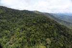Borneo rainforest -- sabah_aerial_1057