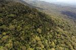 Borneo rainforest -- sabah_aerial_1059