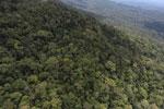 Borneo rainforest -- sabah_aerial_1060