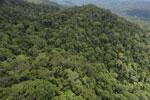 Borneo rainforest -- sabah_aerial_1063