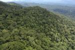 Borneo rainforest -- sabah_aerial_1065