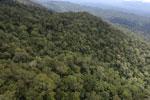 Borneo rainforest -- sabah_aerial_1068