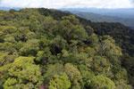 Borneo rainforest -- sabah_aerial_1070