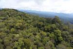 Borneo rainforest -- sabah_aerial_1073