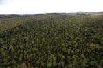 Borneo rainforest -- sabah_aerial_1093