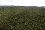 Borneo rainforest -- sabah_aerial_1097