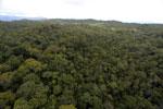 Borneo rainforest -- sabah_aerial_1101