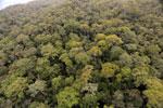 Borneo rainforest -- sabah_aerial_1103