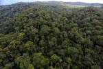 Borneo rainforest -- sabah_aerial_1107