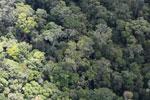 Borneo rainforest -- sabah_aerial_1119