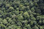 Borneo rainforest -- sabah_aerial_1124