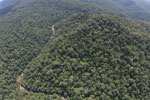 Borneo rainforest river -- sabah_aerial_1139