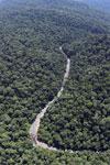 Borneo rainforest river -- sabah_aerial_1143