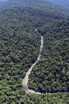 Borneo rainforest river -- sabah_aerial_1144