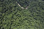 Borneo rainforest river -- sabah_aerial_1158