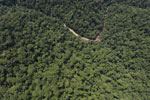 Borneo rainforest river -- sabah_aerial_1159