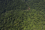 Borneo rainforest river -- sabah_aerial_1166