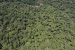 Borneo rainforest river -- sabah_aerial_1167