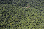 Borneo rainforest river -- sabah_aerial_1168