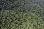 Borneo rainforest river -- sabah_aerial_1170