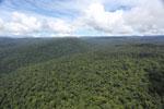 Borneo rainforest -- sabah_aerial_1171