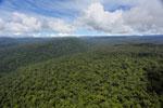 Borneo rainforest -- sabah_aerial_1172