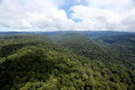 Borneo rainforest -- sabah_aerial_1174