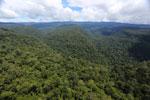 Borneo rainforest -- sabah_aerial_1175