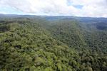 Borneo rainforest -- sabah_aerial_1176