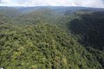 Borneo rainforest -- sabah_aerial_1179