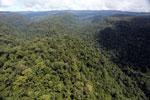 Borneo rainforest -- sabah_aerial_1180