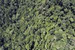 Borneo rainforest -- sabah_aerial_1192