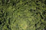 Borneo rainforest -- sabah_aerial_1197