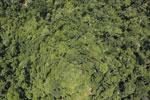 Borneo rainforest -- sabah_aerial_1198