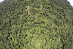 Borneo rainforest -- sabah_aerial_1201