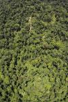Borneo rainforest -- sabah_aerial_1202