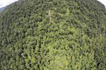 Borneo rainforest -- sabah_aerial_1203