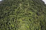 Borneo rainforest -- sabah_aerial_1204