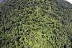 Borneo rainforest -- sabah_aerial_1207