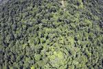 Borneo rainforest -- sabah_aerial_1209