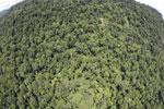 Borneo rainforest -- sabah_aerial_1212