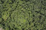 Borneo rainforest -- sabah_aerial_1221